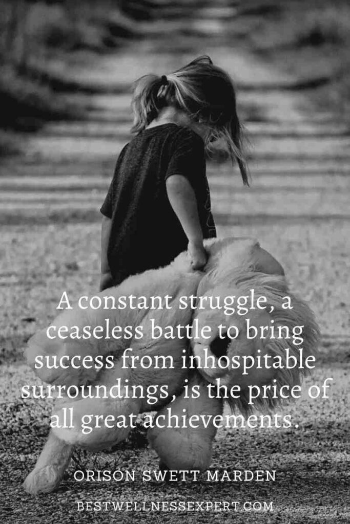 A constant struggle, a ceaseless battle to bring success from inhospitable surroundings, is the price of all great achievements.