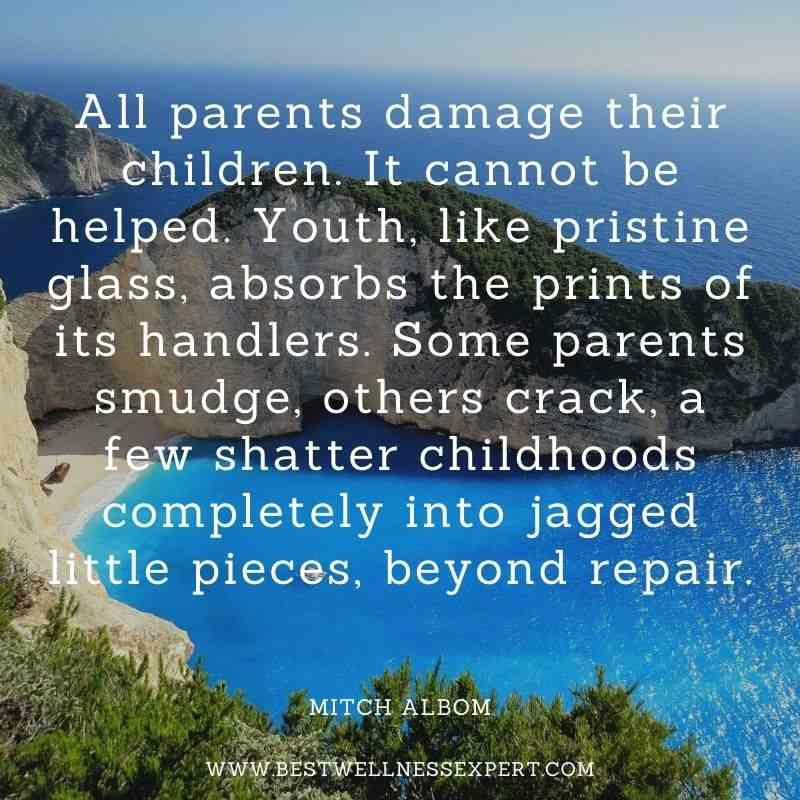 All parents damage their children. It cannot be helped. Youth, like pristine glass, absorbs the prints of its handlers. Some parents smudge, others crack, a few shatter childhoods completely into jagged little pieces, beyond repair.