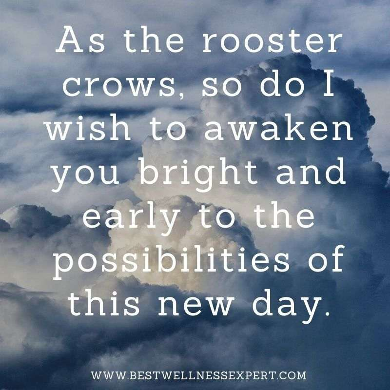 As the rooster crows, so do I wish to awaken you bright and early to the possibilities of this new day.