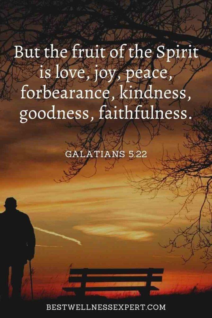 But the fruit of the Spirit is love, joy, peace, forbearance, kindness, goodness, faithfulness.