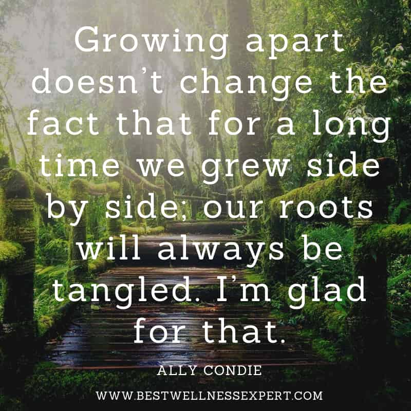 Growing apart doesn't change the fact that for a long time we grew side by side; our roots will always be tangled. I'm glad for that