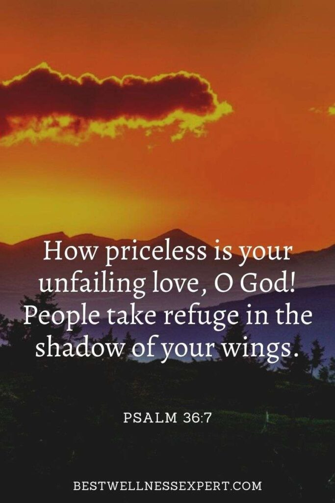 How priceless is your unfailing love, O God! People take refuge in the shadow of your wings.