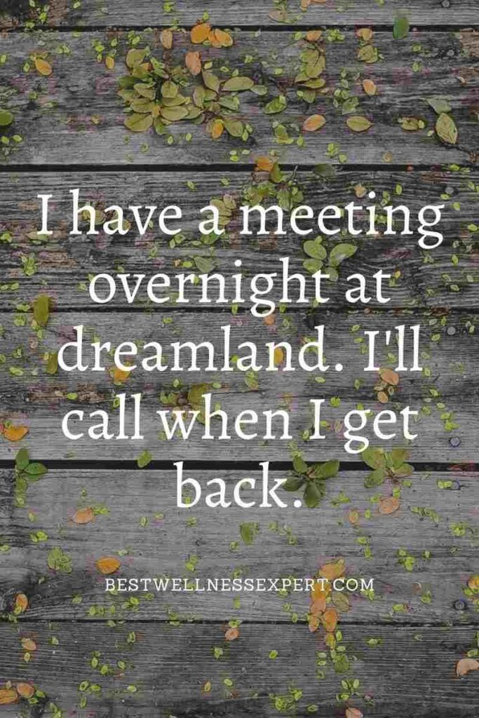I have a meeting overnight at dreamland. I'll call when I get back.