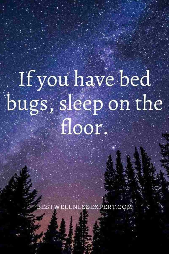 If you have bed bugs, sleep on the floor.