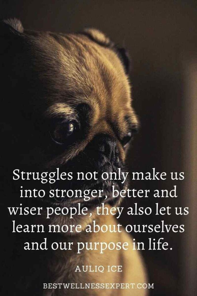 Struggles not only make us into stronger, better and wiser people, they also let us learn more about ourselves and our purpose in life.