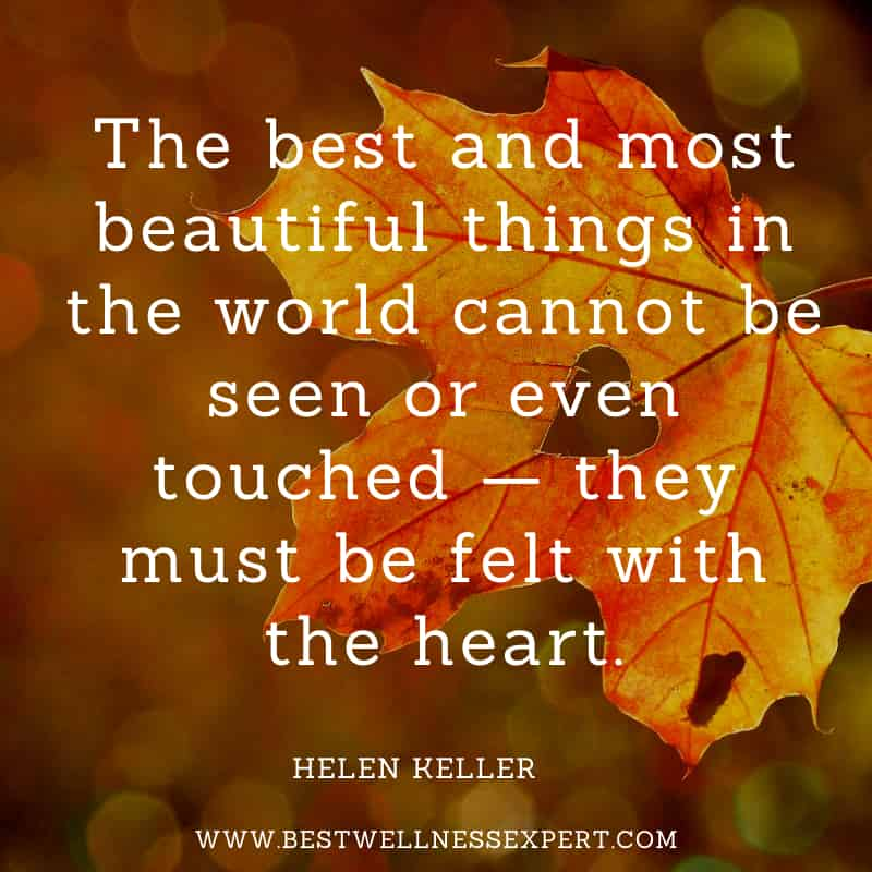 The best and most beautiful things in the world cannot be seen or even touched — they must be felt with the heart