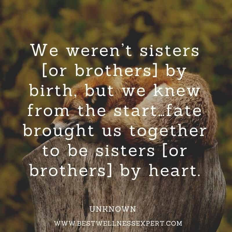 83 True Friends, Old friends, And New Friends Quotes.