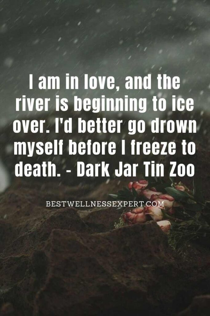 I am in love, and the river is beginning to ice over. I'd better go drown myself before I freeze to death.