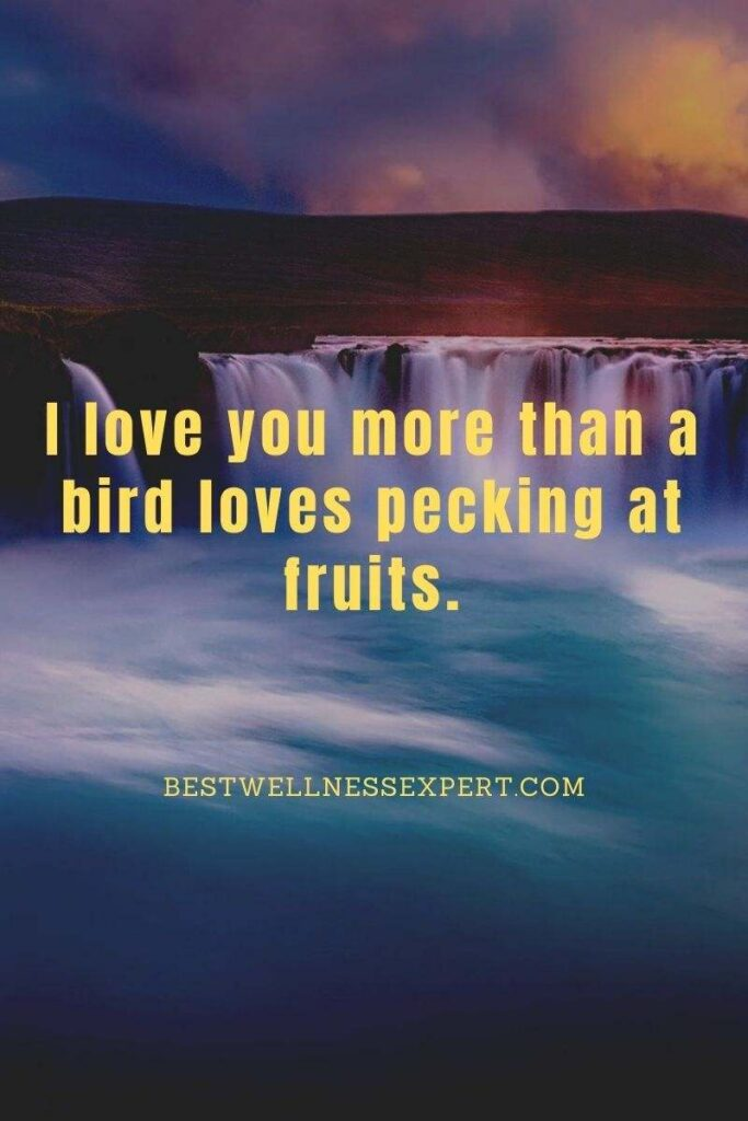 I love you more than a bird loves pecking at fruits.