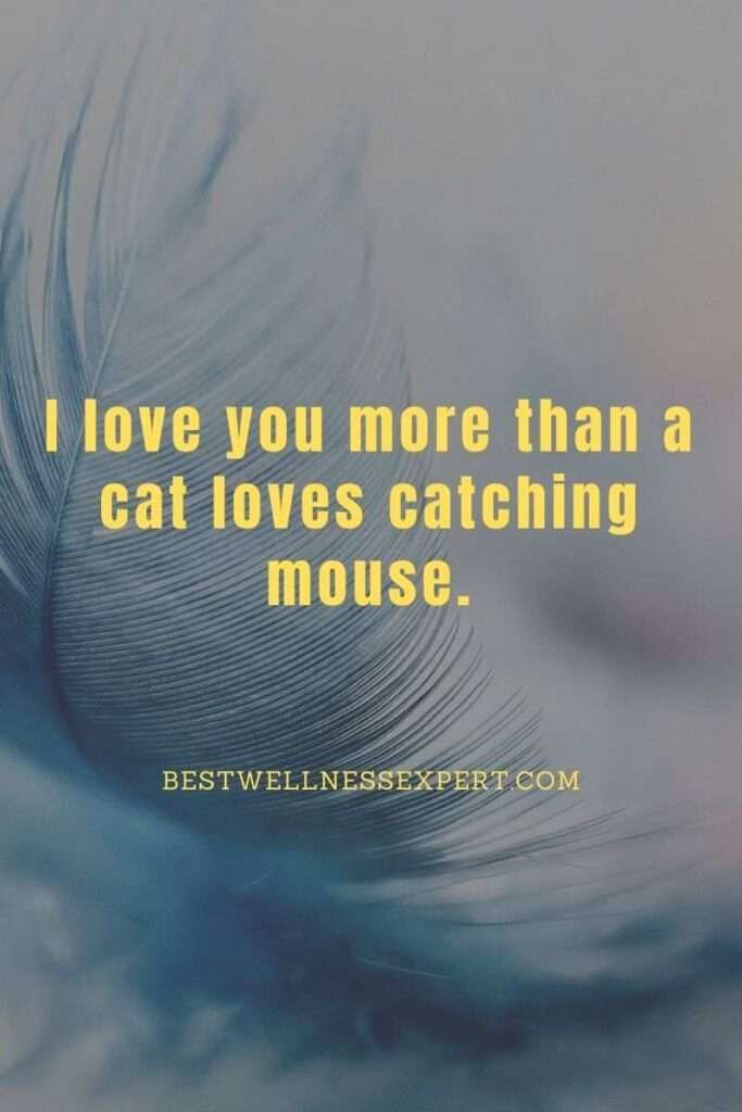 I love you more than a cat loves catching mouse.