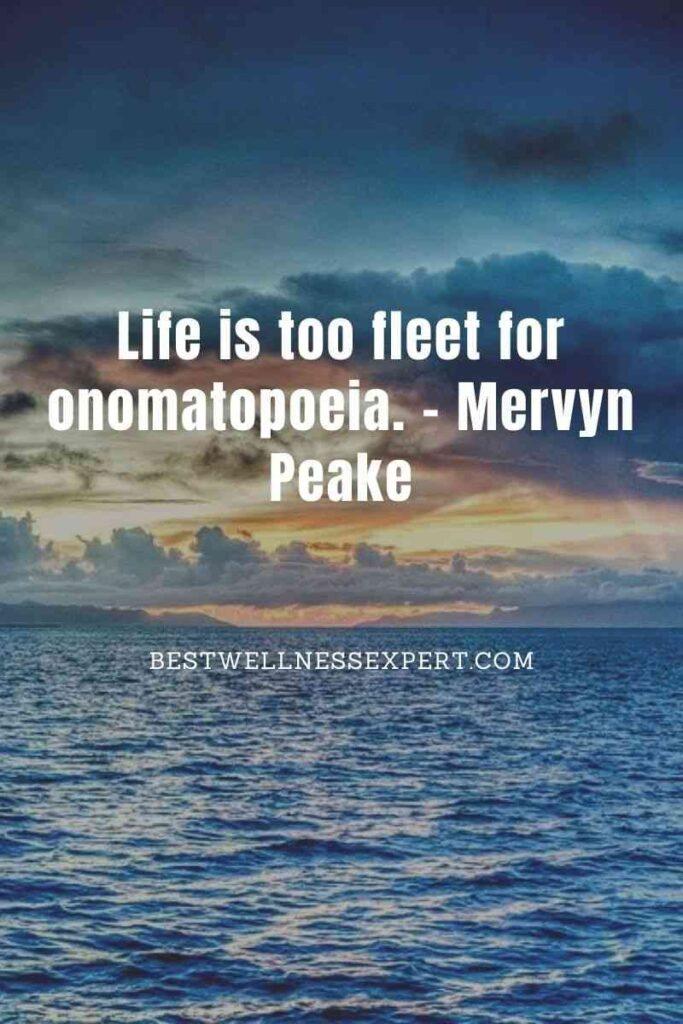 Life is too fleet for onomatopoeia.