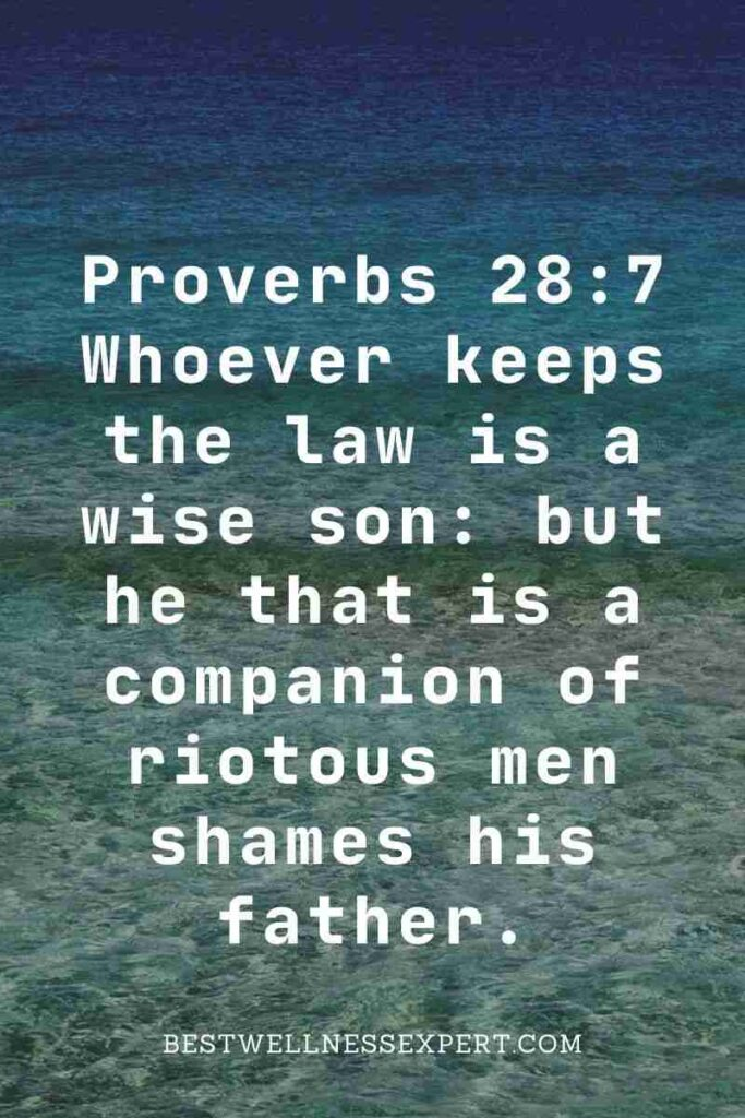 Proverbs 28:7 Whoever keeps the law is a wise son but he that is a companion of riotous men shames his father.