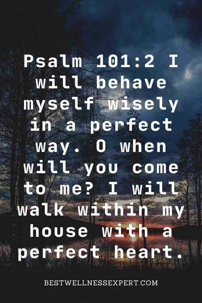 Psalm 101:2 I will behave myself wisely in a perfect way. O when will you come to me I will walk within my house with a perfect heart.